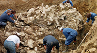 Impunity for mass graves, indifference to the families of the disappeared